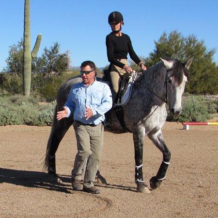 Equine Tai Chi