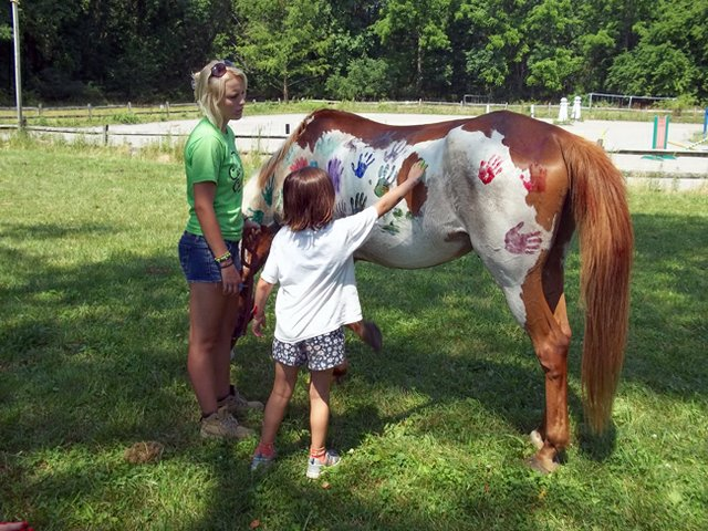 Horse working at summer camp