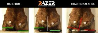 Razer Horse Shoe vs Steel Shoe