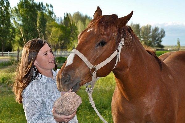 horse lick salt rock-sm.jpg