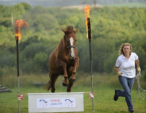 Horse Jumping fire.jpg