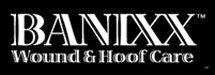 Banixx logo