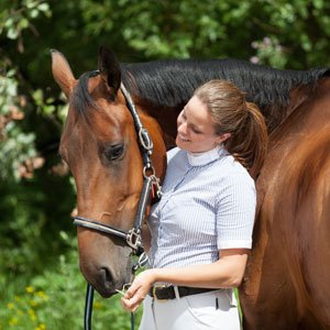 Horse Behaviour Youth Course.Web.jpg