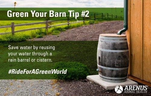 Tip 2 Green