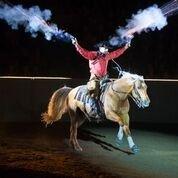 Equine Afffair 1.jpg