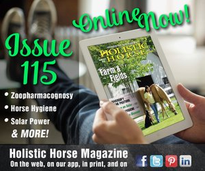 Issue 115 ad