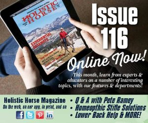 Issue 116 ad