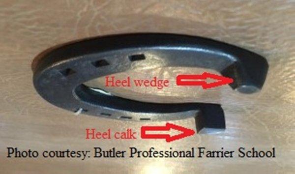 Shoe with Heel Calk