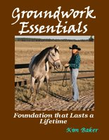 KBNH-GroundworkEssentials-book.jpg