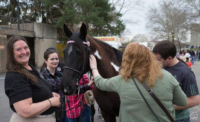 Horses at Equine Affaire