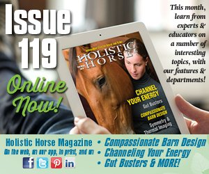 Issue 119 ad