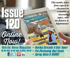 Issue 120 house ad
