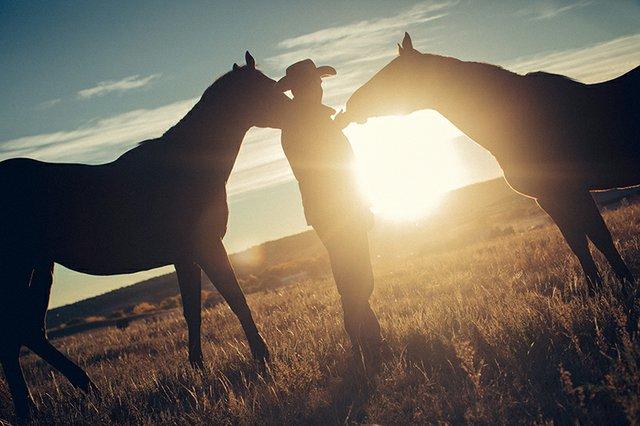 right horse initiative