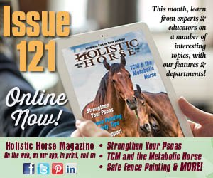 Issue 121 house ad