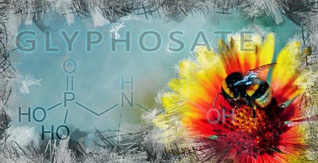 Glyphosates and Bee