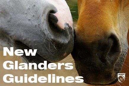 Glanders Guidelines
