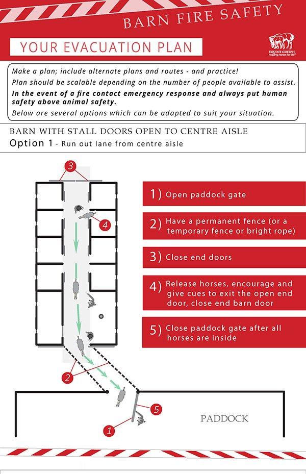 Equine Emergency Plan