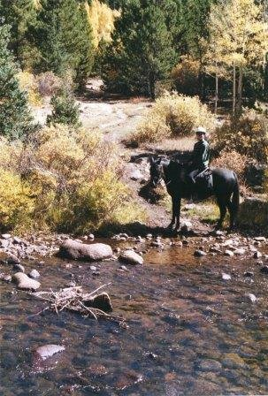 HorseSatisfactionSurvey-Guanella-Pass-water-CarlaDiana.jpg