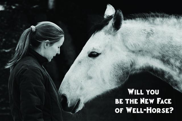 Well-HorseNewFace.jpg