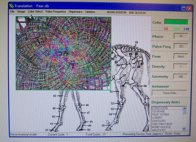 equine_etherapycomputerimage.jpg