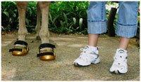hoofboots_sneakers.jpg