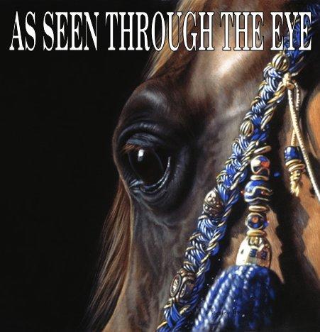 eyegrid.jpg