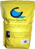 horsequencher.jpg