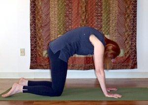 yoga exercises for equestrians  holistichorse