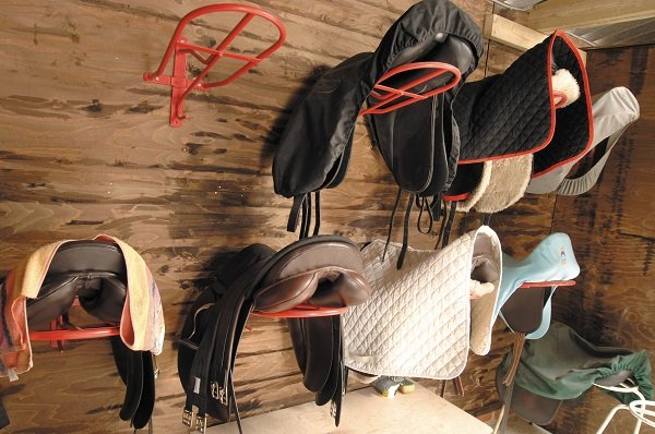 English Saddles in tack room