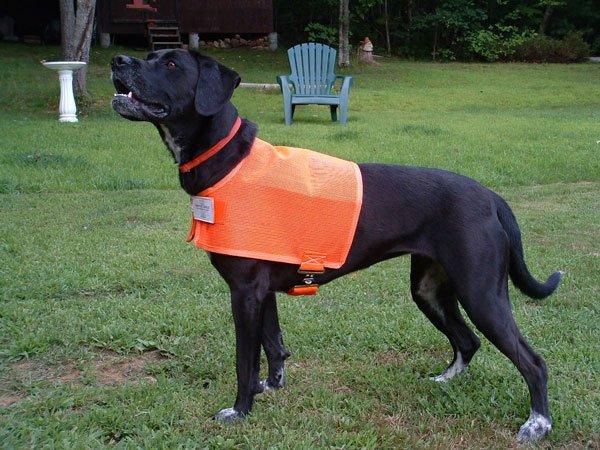 Dog Vest Protectavest