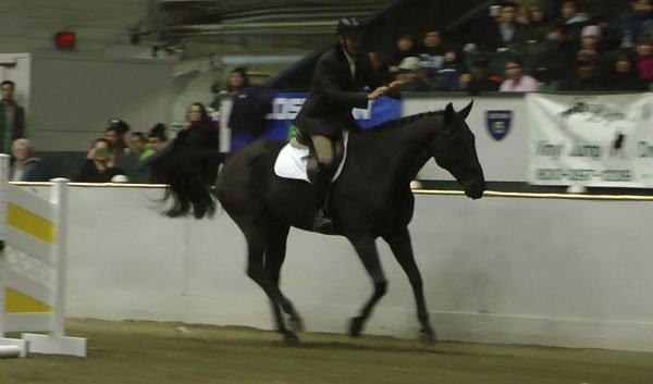 equine-affair.jpg