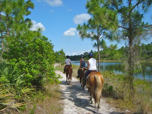 Trail Ride in Florida