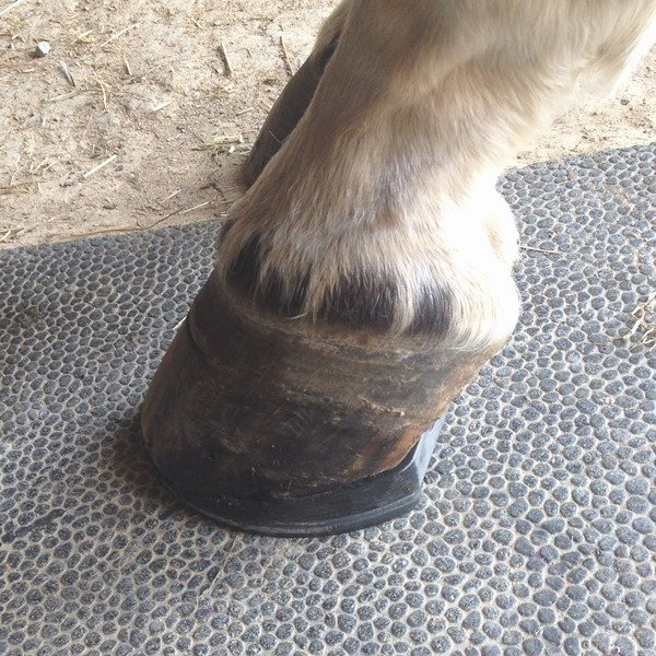 Wedge Pad added to Shod foot