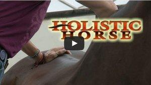 HH TV Trailer
