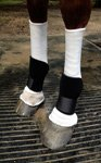 Sox for Horses Bedsores