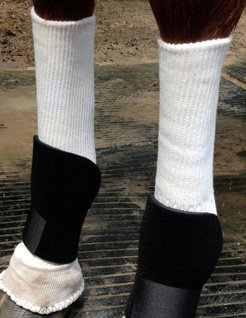 Sox for Horses